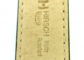 Hirsch 'Osiris' L Green Leather Strap, 20mm